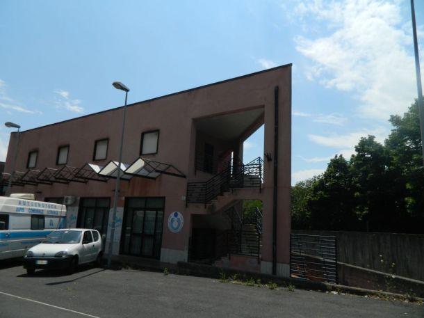 DSCN8842